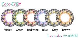cocoeye-lavender-softlens