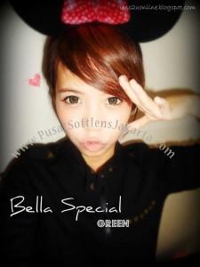 wbs-green