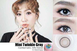 mini-twinkle-gray