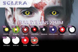 sclera_scelera_lens